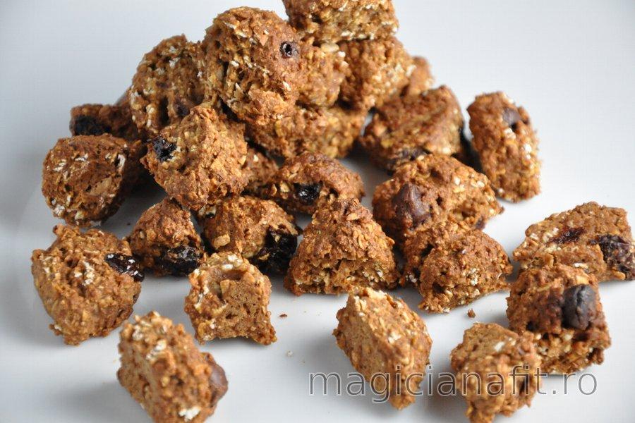 Cereale de casă sănătoase cu nucă de cocos şi ciocolată